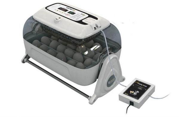 автоматический инкубатор