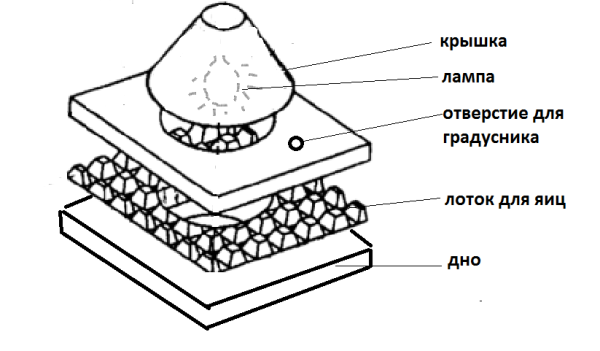 Схема инкубатора из картонной коробки