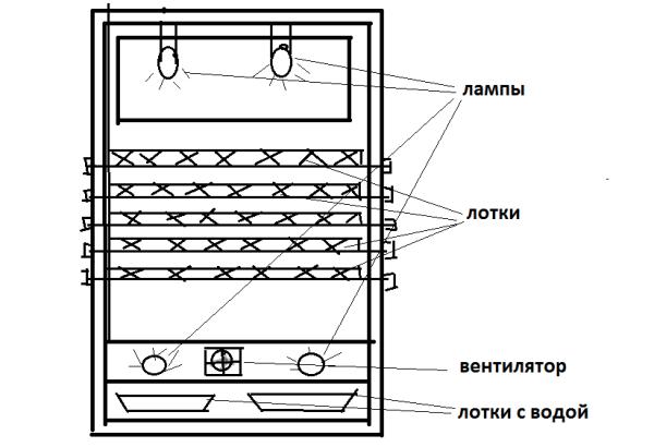 Инкубатор своими руками устройство 36