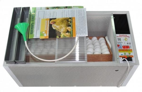Инкубатор Блиц: описание моделей норма, 48, 72 и инструкция по инкубации