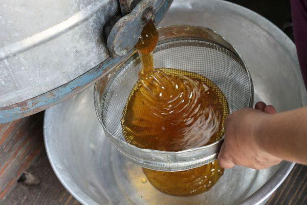тягучесть мёда