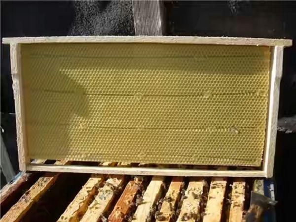 Рамочные ульи для пчел