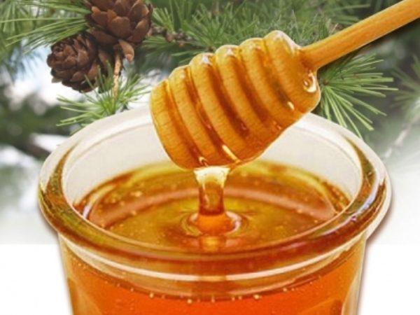Таёжный цветочный мёд