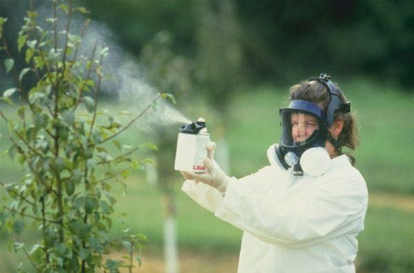 Обработка растений химическими веществами