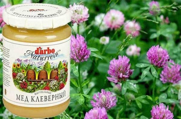 Фасованный клеверный мёд