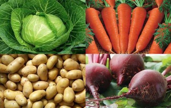 Капуста, морковь, картофель, свекла