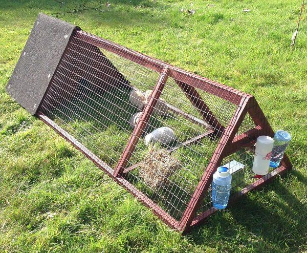 Приспособление для кормления и содержания кроликов