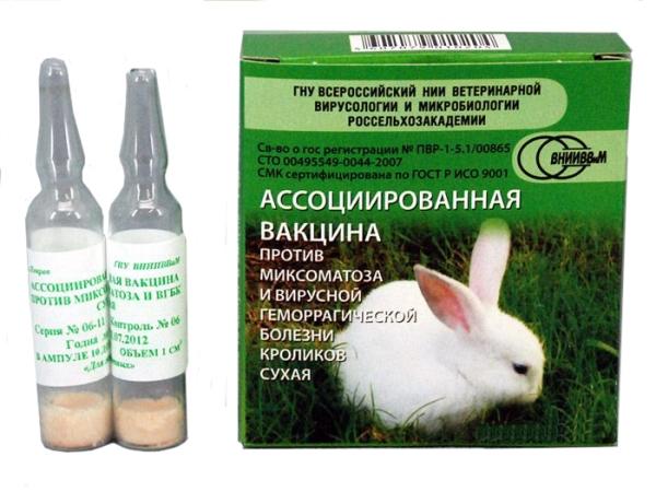 Вакцина ассоциированная против миксоматоза и вирусной геморрагической болезни кроликов сухая