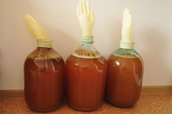 Сидр по классическому рецепту должен бродить 1-2 месяца, готовность определяется по опавшей перчатке