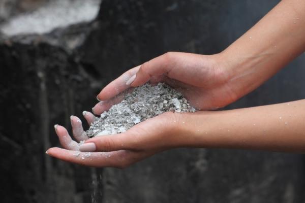 Начиная со второго года сливу Писсарди удобряют перегноем, калийными удобрениями и мочевиной