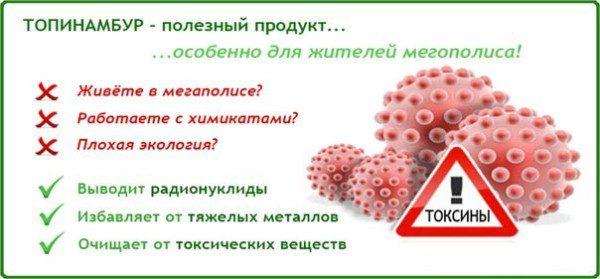 Топинамбур: полезные свойства земляной груши