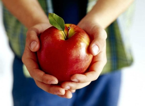 Какова польза, состав, вред яблок для организма человека, всем ли можно этот фрукт