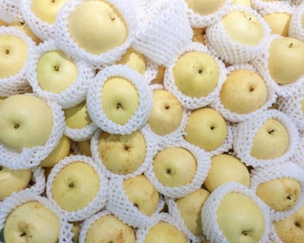 В среднем срок хранения груш колеблется от 1 до 4 месяцев