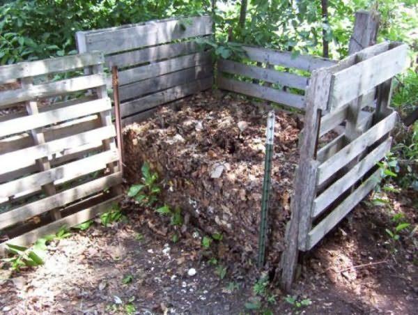 Готовый к использованию в качестве удобрения компост