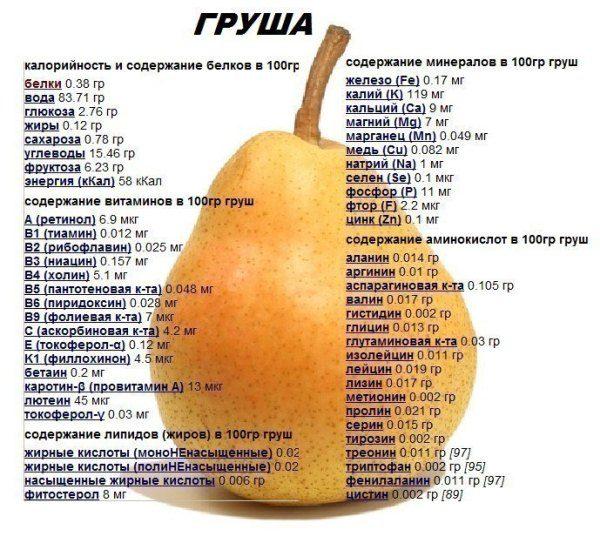 Состав плодов груши
