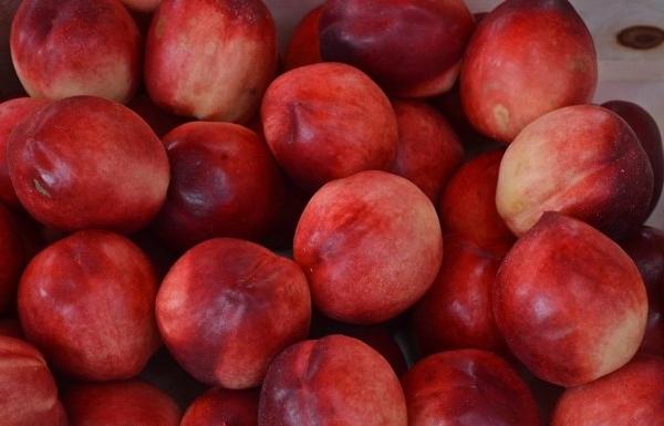 Гибрид персика и яблока называется яблочный нектарин