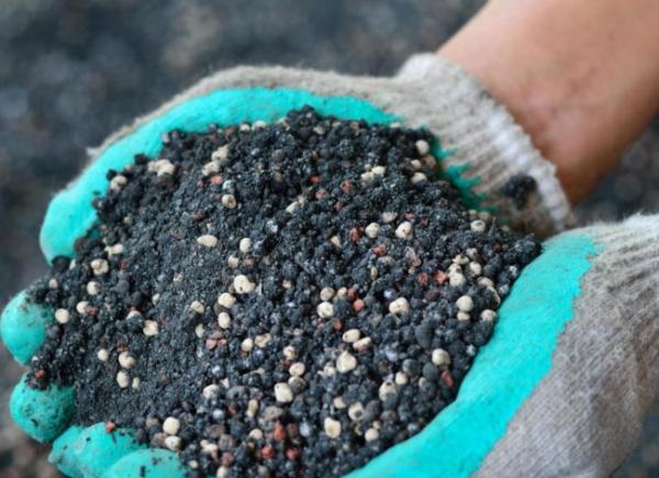 Перед посадклй вишни нужно перекопать участок несколько раз, внести удобрения суперфосфат, компост или навоз