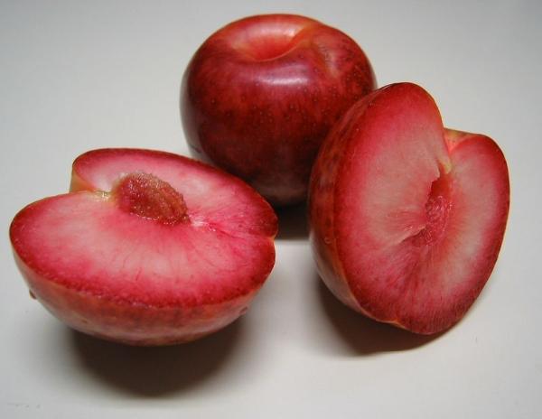 Плуот — гибрид, на ¼ состоящий из абрикоса и на ¾ из сливы