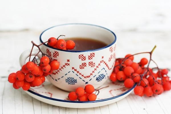 Из красной рябины можно приготовить отвар и чай, пюре и настойку, порошок и сок
