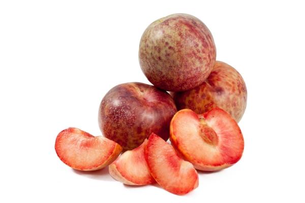 Шарафуга - гибрид, полученный при скрещивании персика, сливы и абрикоса