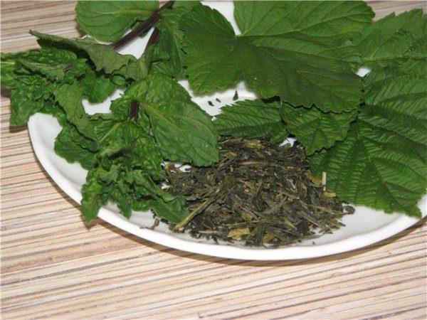 Листья смородины обладают множеством полезных веществ