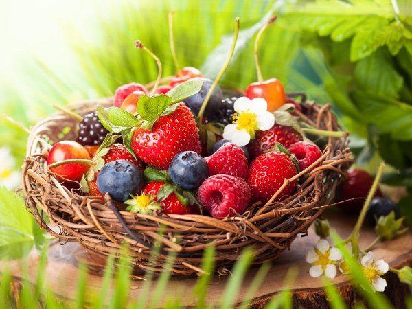 Лесные ягоды в корзине