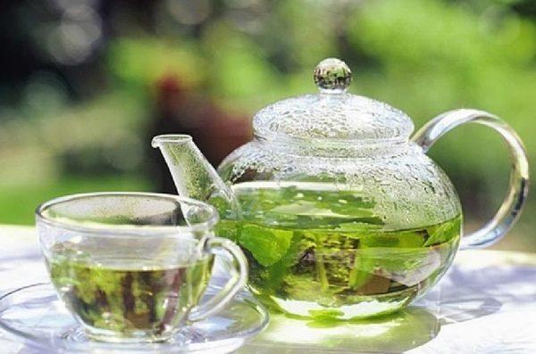 Чай из зеленых листьев ирги обеспечит крепкий здоровый сон