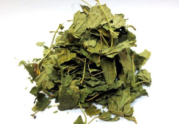 Листья земляники применяют в косметологии в качестве тоников, от веснушек и угрей, от облысения