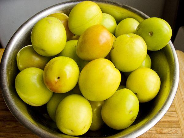 Спелые, собранные плоды алычи