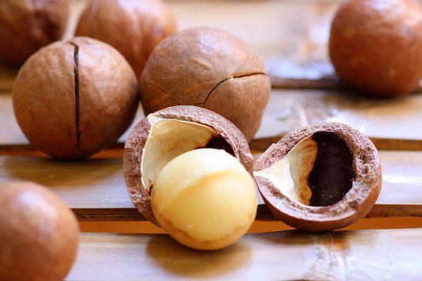 Орехи Макадамия очень ценятся своими лечебными свойствами