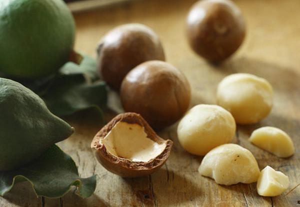Плоды Макадамии очень часто используется в элитных косметических средствах