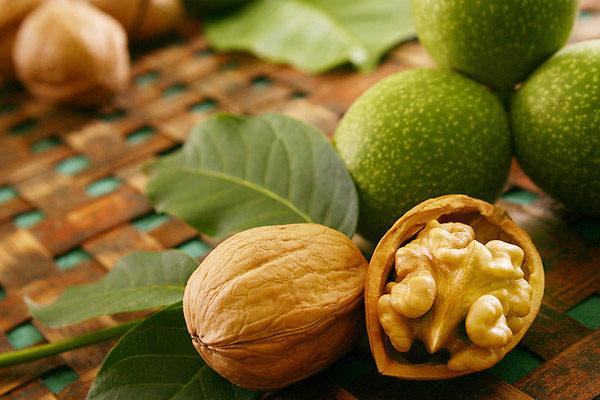 Расколотый грецкий орех, готовый к употреблению