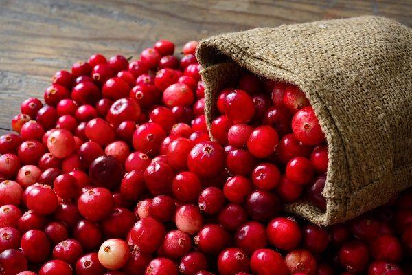 Рассыпанные ягоды свежей клюквы