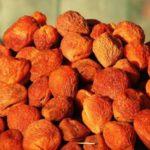 Урюк - сушенные плоды абрикосы с косточкой