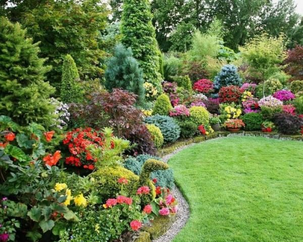 Декоративные кустарники и деревья украсят Ваш дачный участок