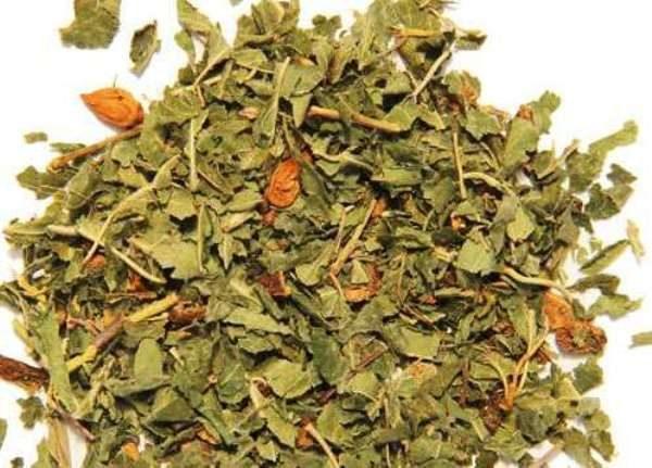 Для лечения сахарного диабета и гипертонии народные целители советуют применять отвар из листьев и молодых веток айвы