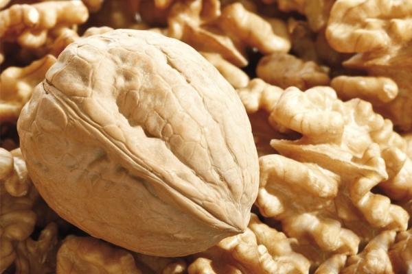 Грецкий орех противопоказан при язве, аллергии, гипертонии