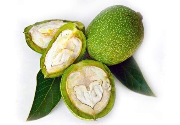 Зеленый грецкий орех и его кожура содержат большое количество витаминов, жирных кислот и дубильных веществ