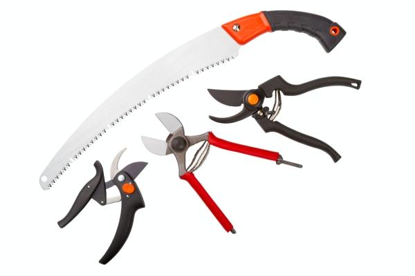 Секатор, ножовку, садовый нож и сучкорез нужно наточить и продезинфицировать