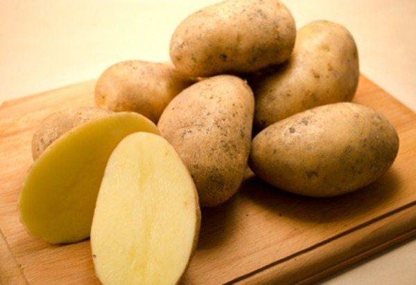 Раннеспелый сорт картофеля Колетте