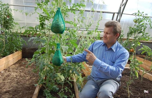 Бизнес план выращивание арбузов 68