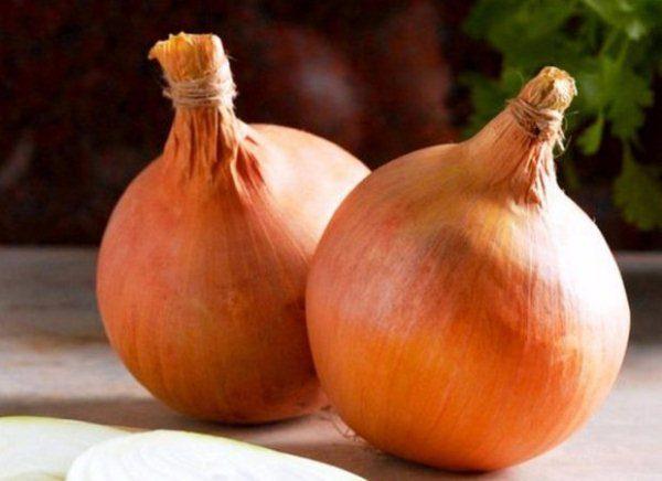 Луковицы сорта Стурон довольно крупные, до 200 грамм