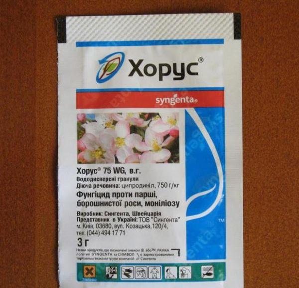 Для профилактики заболеваний используют препарат Хорус