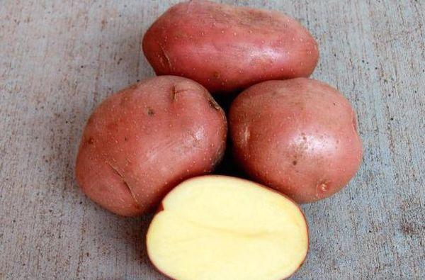 Мякоть картофеля - кремово-желтого цвета
