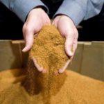 Табачная пыль защищает от грибковых заболеваний