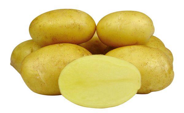 Клубни сорта Джелли овальной формы и имеют темно-желтую мякоть