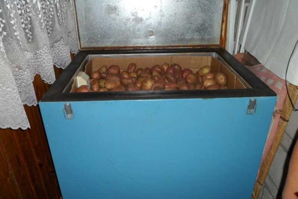 Хранить картофель можно на утепленном балконе