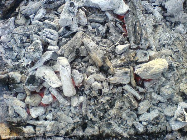 В древесной золе содержится большое количество калия и фосфора