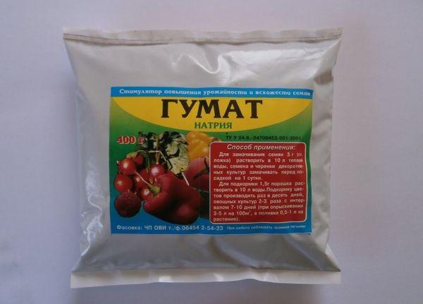При появлении на томатах кистей цветов необходима подкормка гуматом