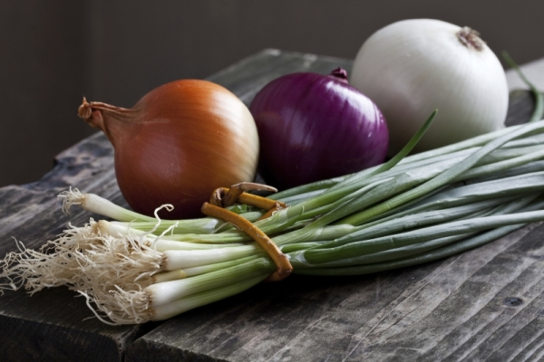 Зеленый и репчатый лук: польза и вред лоя здоровья человека, применение в народной медицине
